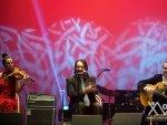 XV Gala de los Premios de la Musica Aragonesa 17 de marzo de 2014_186 (6)